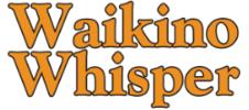 Visique O'Hagan vision care logo